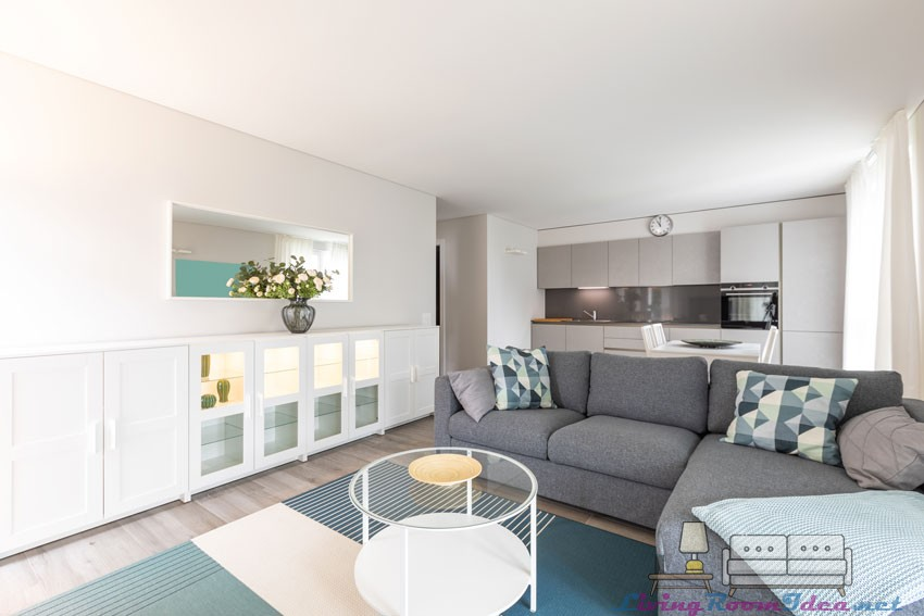 Living Room and Open Kitchen Ideas